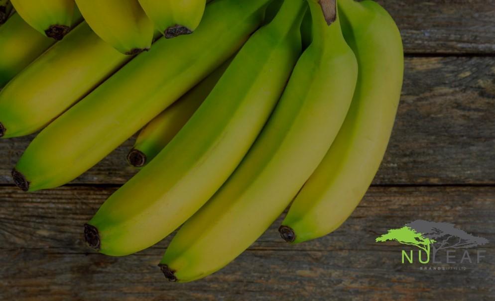 NLB Bananas 1 (2)