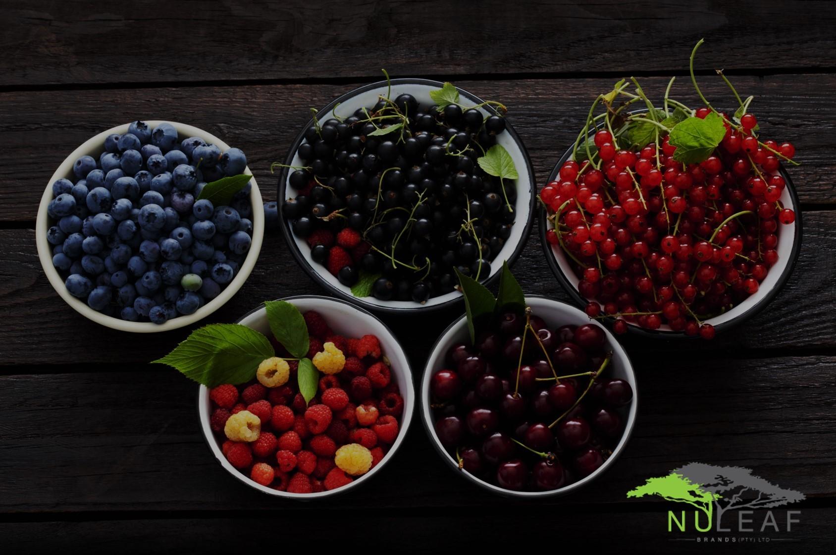 NLB Berries
